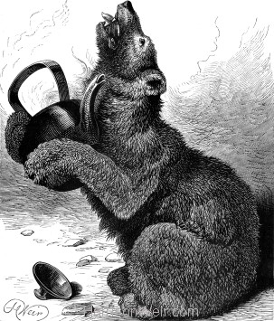 1878 The Bear and the Tea-Kettle by H Weir
