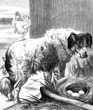1878 The Egg-Collector, by Harrison Weir