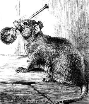 1878 The Rat and Spoon, by Harrison Weir