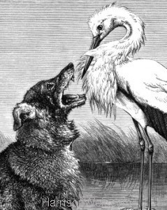 Detail: The Wolf and the Stork, by Harrison Weir