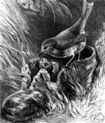 1878 A Robin's Nest in a Shoe, by Harrison Weir