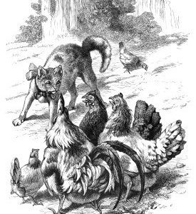 1870 Cat Protecting a poor Hen, by Harrison Weir