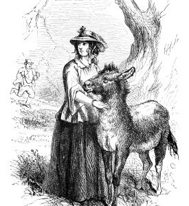 1879 Jack's kind friend, by Harrison Weir