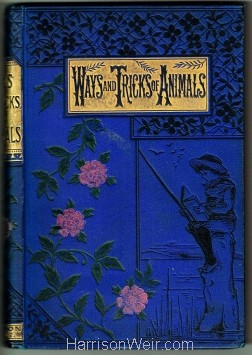 Book Cover: Ways and Tricks of Animals by Mary Hooper