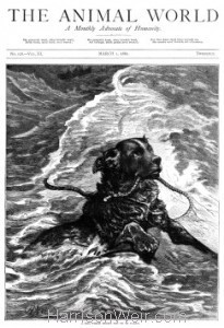 Full Cover Page from The Animal World, March 1st 1880 by Harrison Weir
