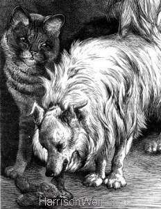 Detail: 1881 Cat Entertaining her Friend by Harrison Weir