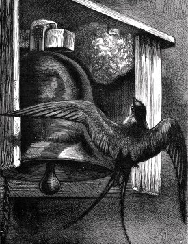 1881 The Nest in the Belfry by Harrison Weir