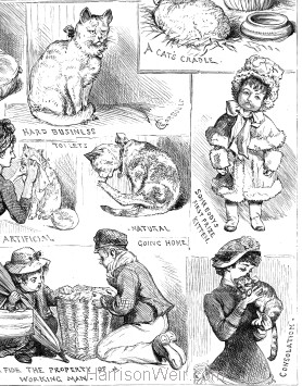 Detail: Sketches of the Cat Show at the Crystal Palace 1883