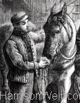 Our Darlings 1886