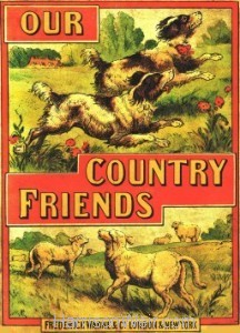 Book Cover: Our Country Friends