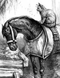 Detail: 1888 Strange Friends by Harrison Weir