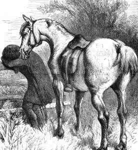 1890 A Friend in Need by Harrison Weir