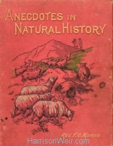 Book Cover: Anecdotes in Natural History by Rev F.O.Morris