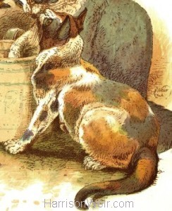 Detail: 1885 Dolly, Tommy & Brownie by Harrison Weir