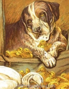 Detail: 1885 Dog and Ducklings by Harrison Weir