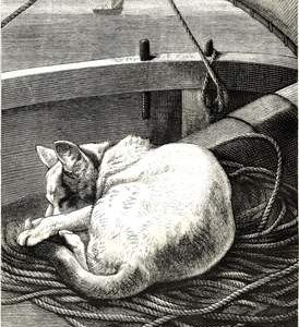 1877 Puss On A Voyage by Harrison Weir