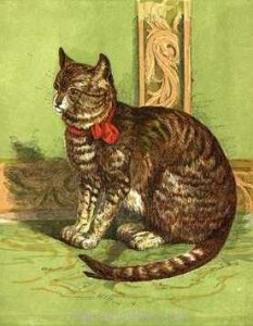 1866 Poor Pussy by Harrison Weir