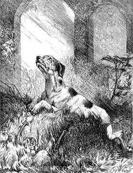 1876 The Affectionate Dog by Harrison Weir