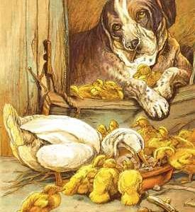 1885 Dog and Ducklings Frontispiece from Animal Stories in Pictures and Prose by Harrison Weir