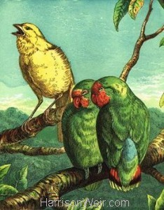 1872 Canary and Love Birds by Harrison Weir