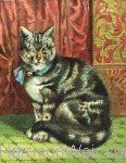 1872 The Cat by Harrison Weir