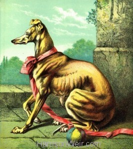 1872 Circa: THE DOG by Harrison Weir