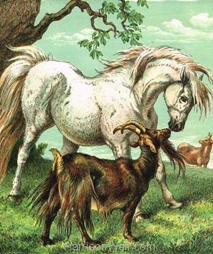 1872 Pony and Goat by Harrison Weir