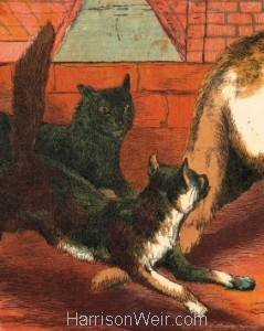 Detail: 1865 Tulip and her kittens by Harrison Weir