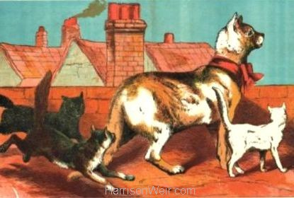 c1865 Our Puss and Her Kittens..Centrespread by Harrison Weir